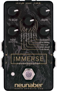 neubaber-immerse-this-one