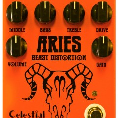 The Aries Beast Distortion Winner is…